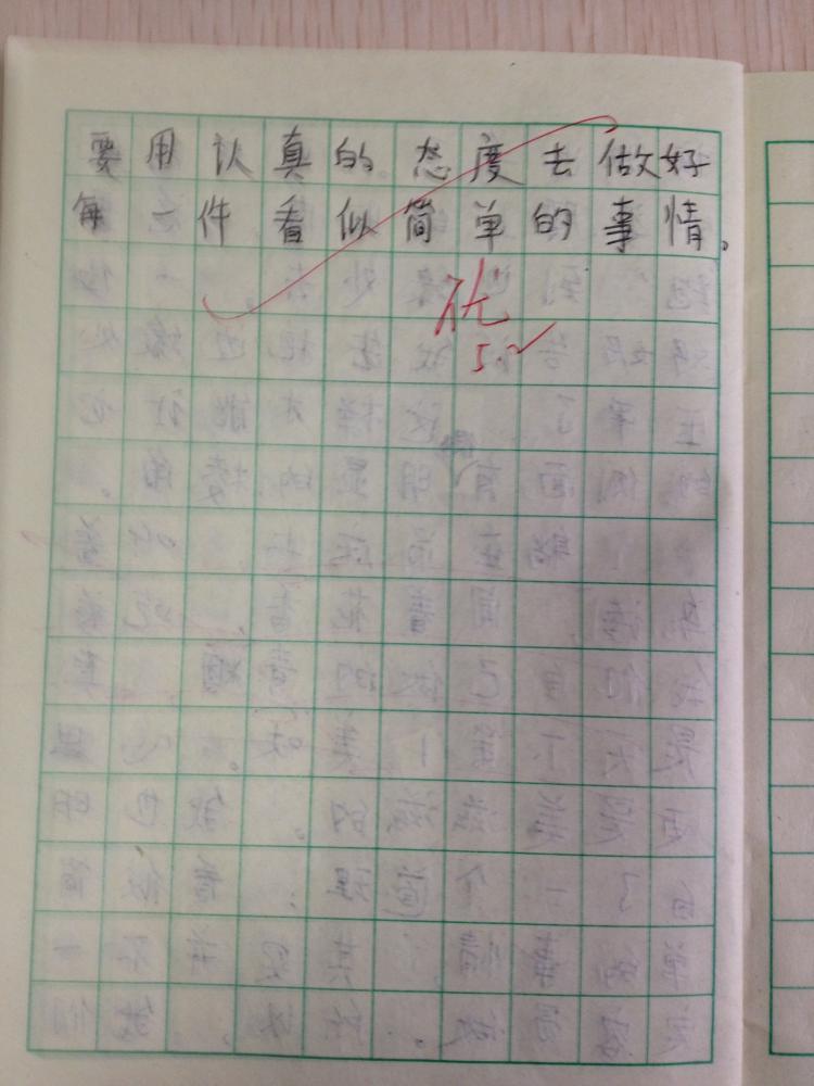 老师的评价