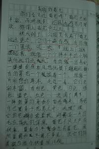 菊花的作文_写菊花的作文500字