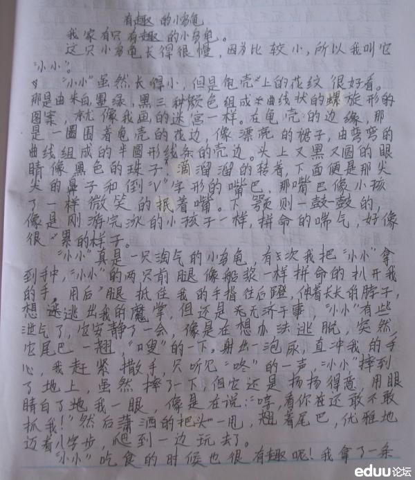 【妈妈晒】有趣的小乌龟_作文交流_北京家长