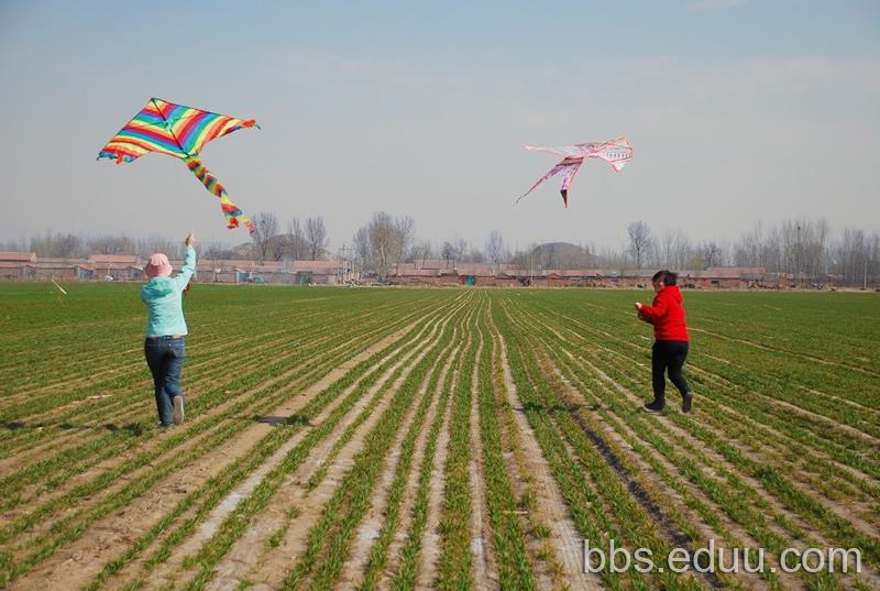 春天来了,一起去麦田放风筝吧! - 2014幼儿园入园